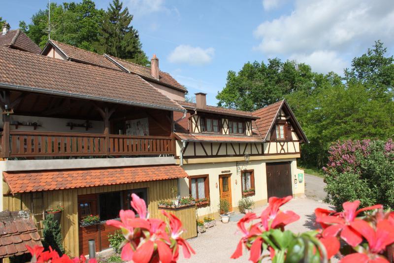 Maison Alsacienne classée gîte de France 3* en Centre Alsace, aluguéis de temporada em Epfig