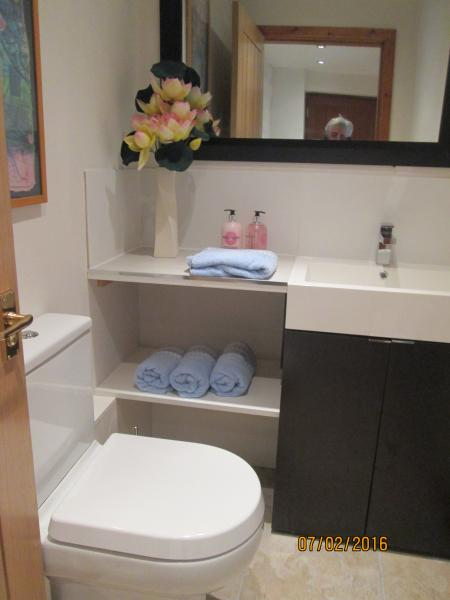 Downstairs wc with heated towel rail