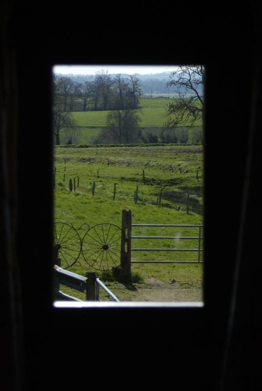 Your view on waking up and opening the curtains.