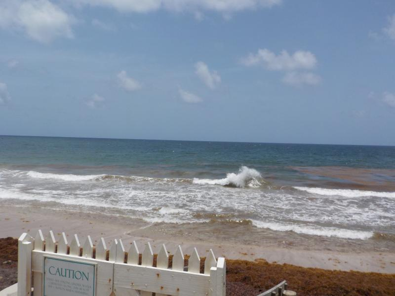 'PARADISE FOUND', vacation rental in Basseterre