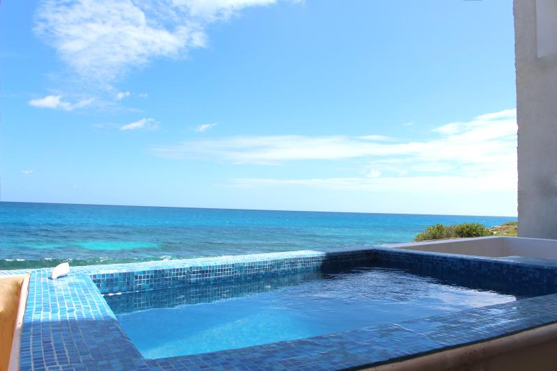 Private pool overlooking the ocean (solar heated until November & then will be heated)