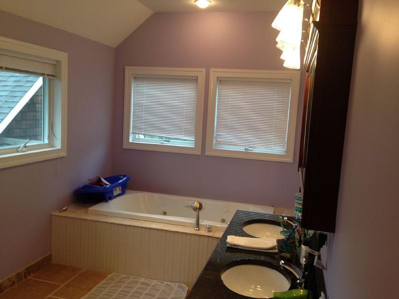 Master bathroom, tub and walk in rain shower. Double sink.