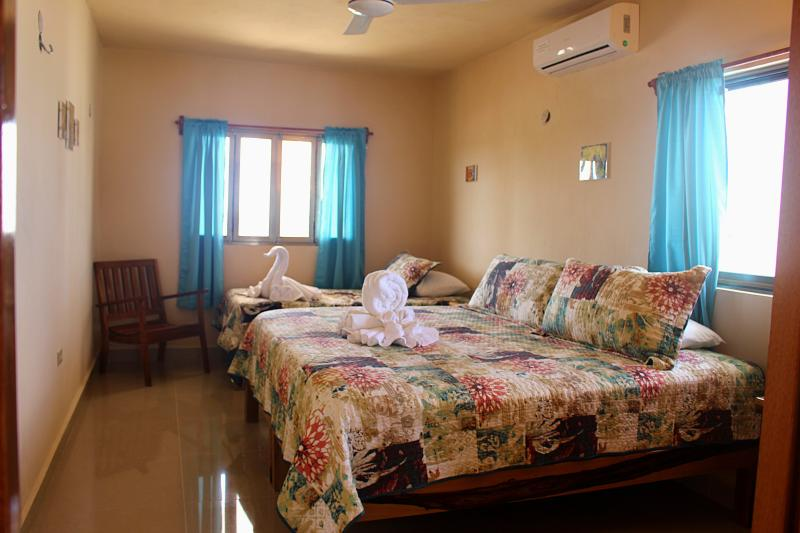 Second Bedroom (king & single)