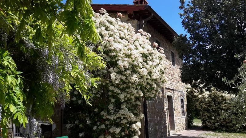 Grace Hayloft - Il Fienile di Grazia, location de vacances à Castelfranco Piandisco