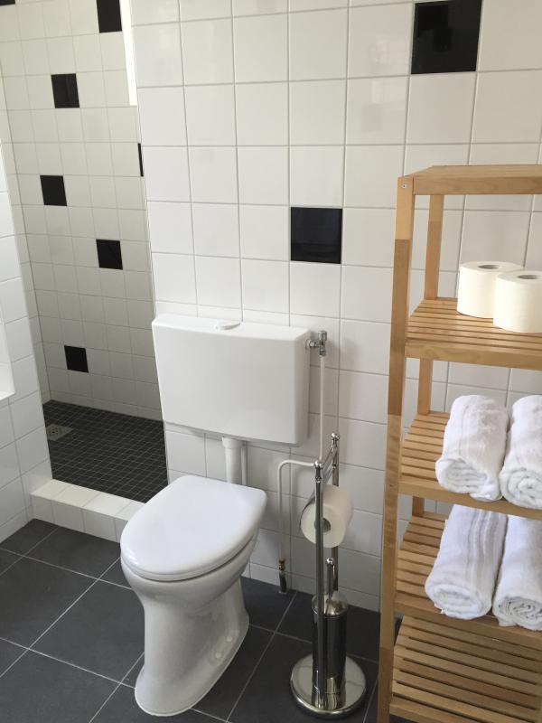 badkamer met douche, bad en toilet