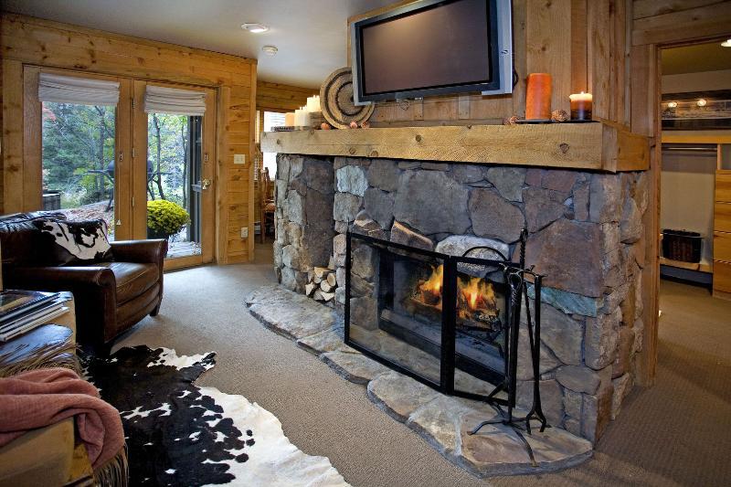 Foyer au bois dans la pièce principale, grande télé à écran plat.