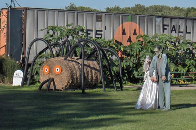 Local farms prepare for the Fall visits.