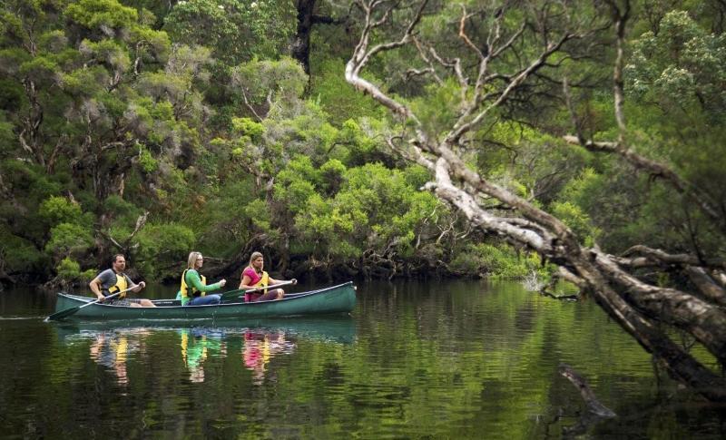 Kayaking on the Blackwood River