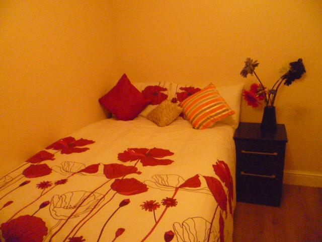 LONDON PETIT STUDIO, SLEEPS 2, CLOSE TO CITY., location de vacances à Ilford