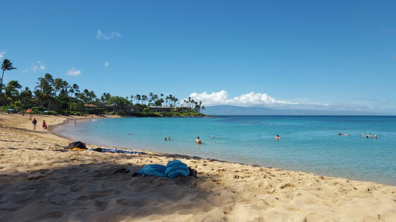 Napili Bay cove near by