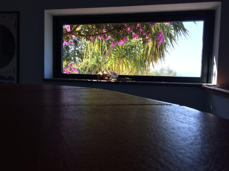 Soggiorno - vista mare e giardino laterale