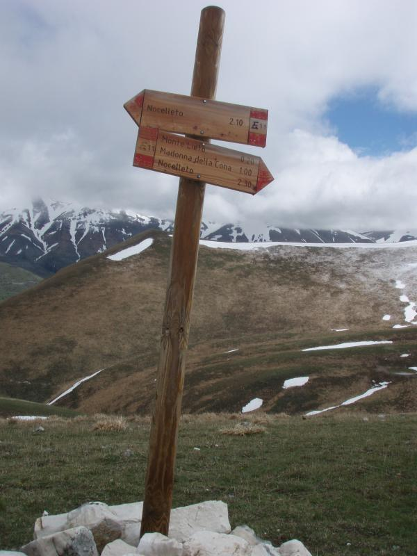 Numerous signposted trails in and around the Sibillini range