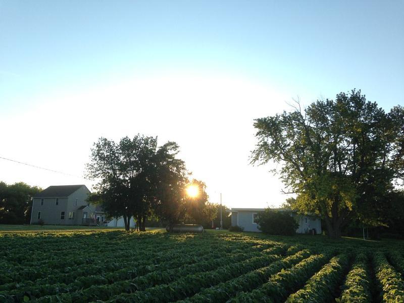 Dawn;s Early Light At Blair Creek