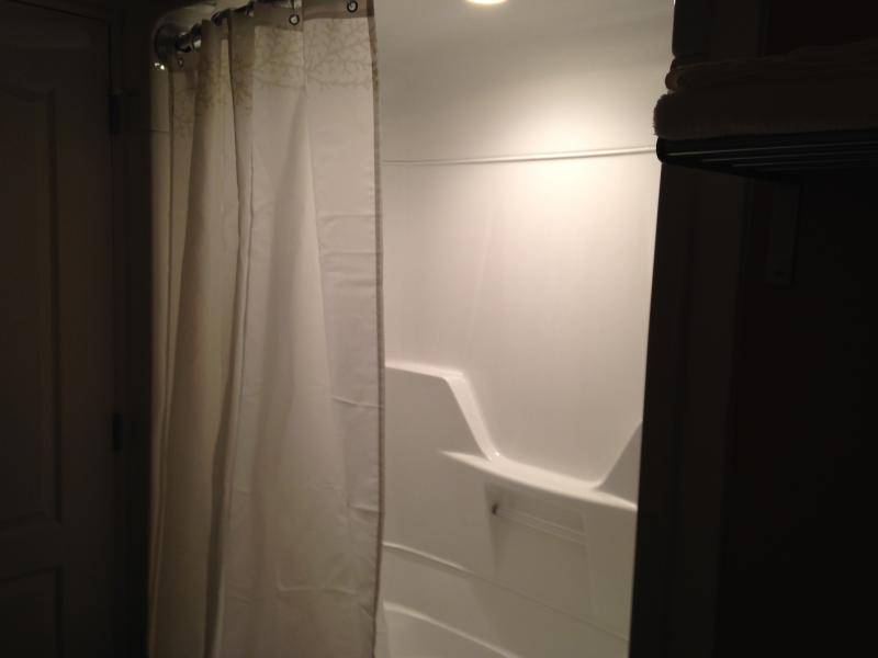 Full size tub and shower with LED lighting.