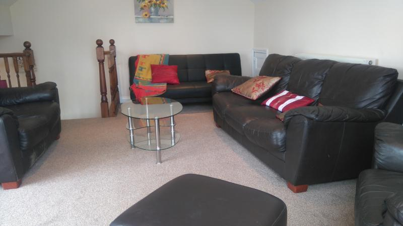 large living room with bed settee