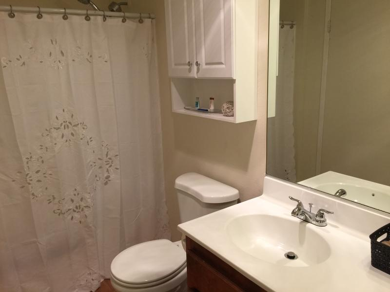 Master bedroom private bath with shower/tub combination