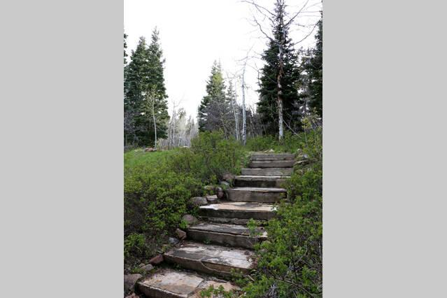 steps to the cabin