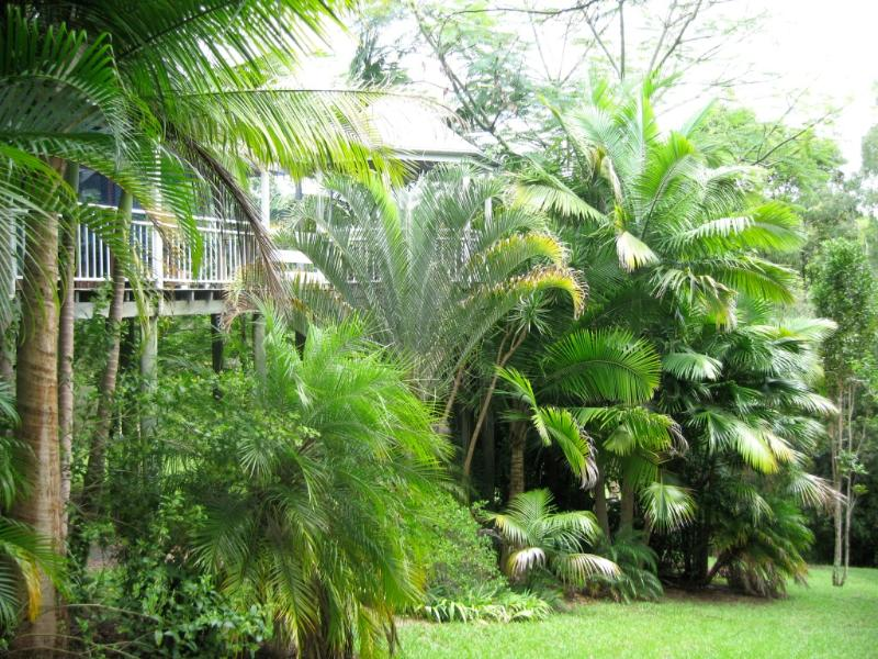 Tropical lush garden with view of gazebo off main deck and living area