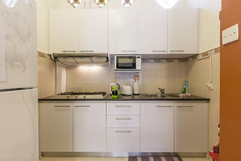 Western Kitchen. Fully equipped. Microwave, gas-stove, big fridge, freezer, toaster, kettle  etc..