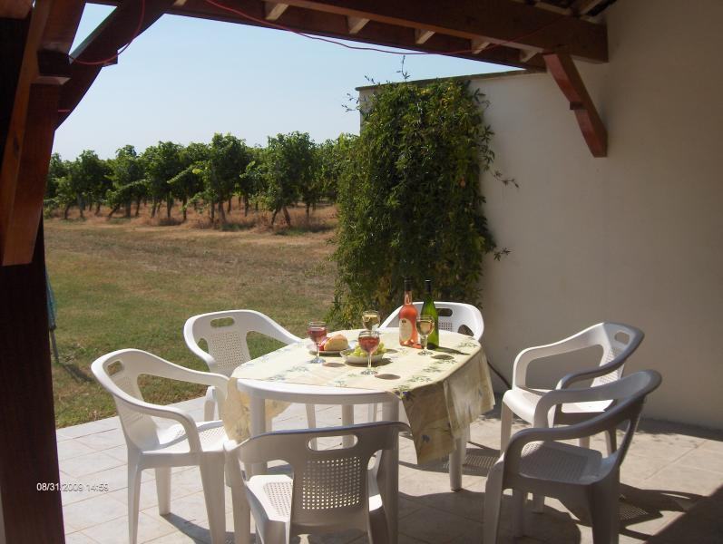 Gite Patio overlooking vines