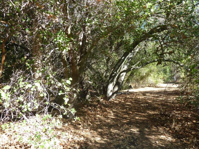 After your massage or facial meander the peace path in quiet solitude for rejuvenation and quiet