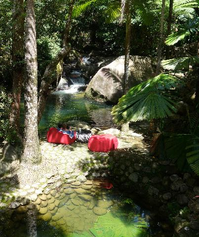 View from the verandah  overlooking your private natural swimming pool. Perfect place to relax.