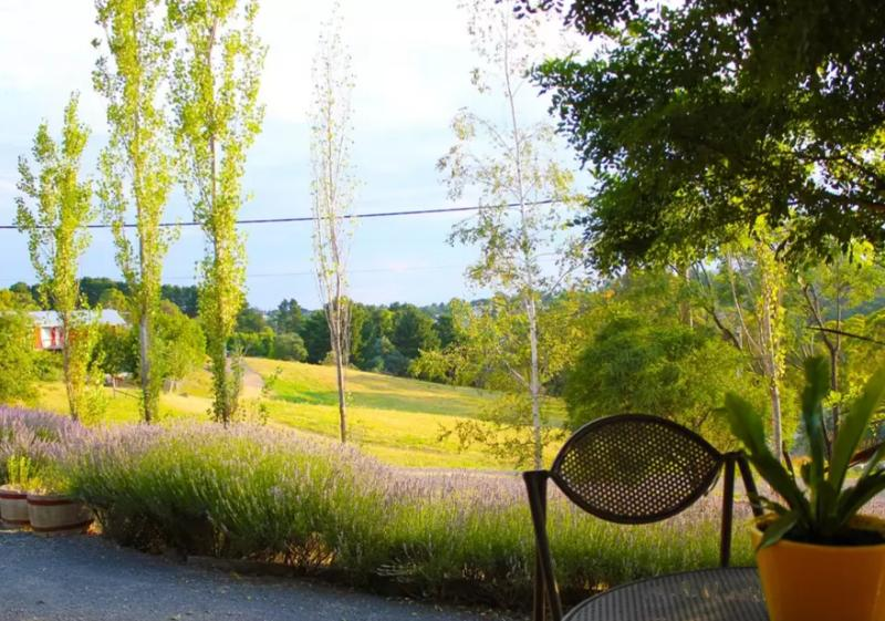 Beautiful views of lavender and Doctor's Gully from Gullyview Cottage deck.
