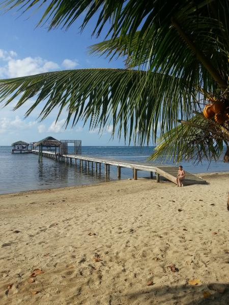 A Paradise To  Dive - Snorkel Or Just Relax – semesterbostad i Sandy Bay