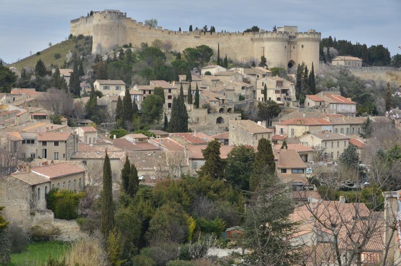 Vue sur Villeneuve les Avignon
