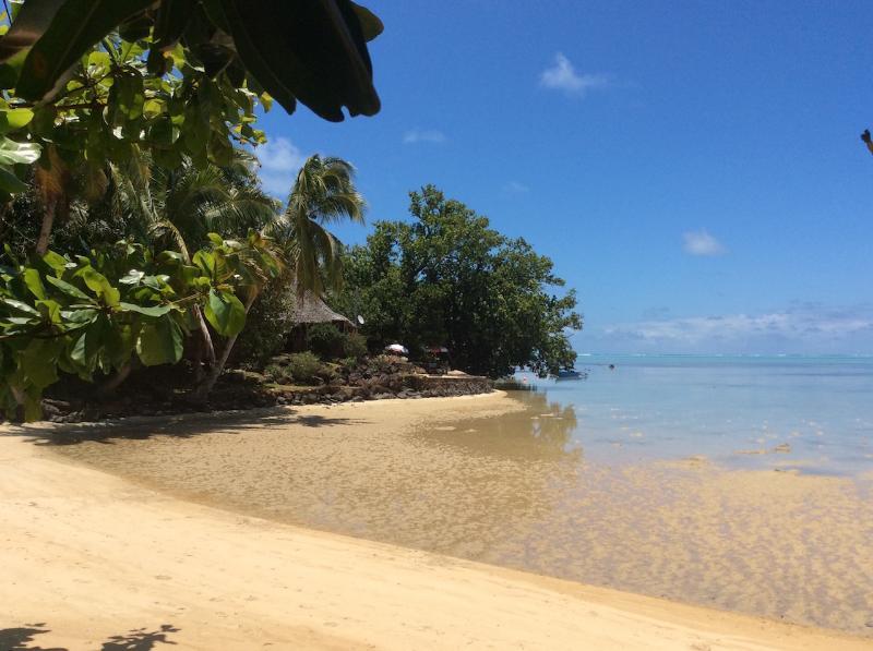 Vue des bungalows sur le lagon