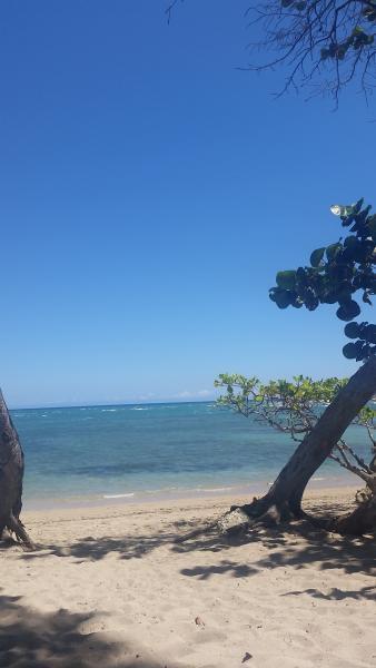 Cofresi Palm Beach & Spa Resort Jr Suite, vacation rental in Cumayasa