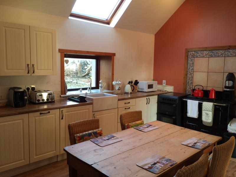 Large new fully-equipped kitchen with dishwasher and 2 stoves (1 electric & 1 multi-fuel)
