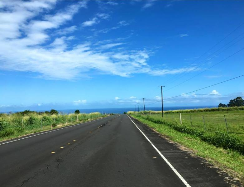Drive down from the famous Akaka Falls to the sleepy town of Honomu.