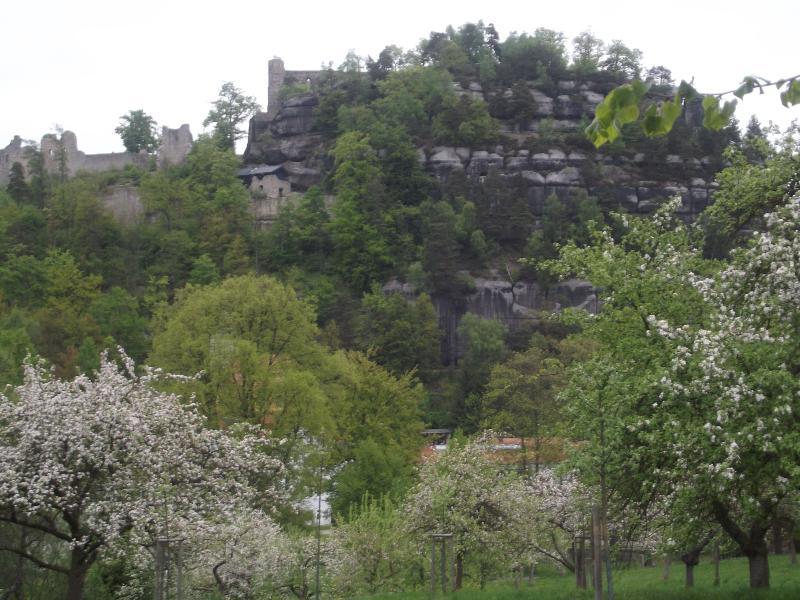 Berg Oybin im Ort Oybin