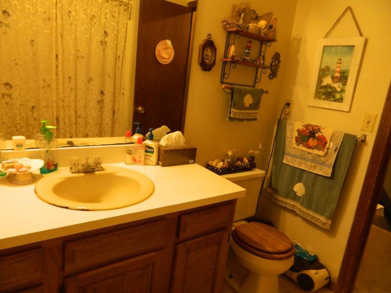 Salle de bains-propre et du savon fourni, shampoing, etc ..
