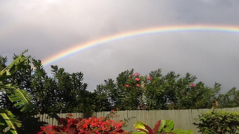 Beautiful Morning Rainbows
