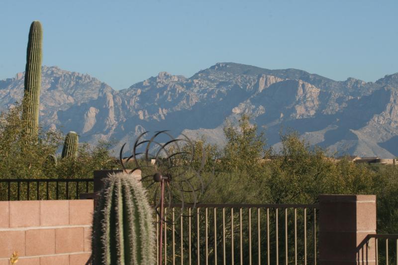 Catalina Mountain vista from the backyard