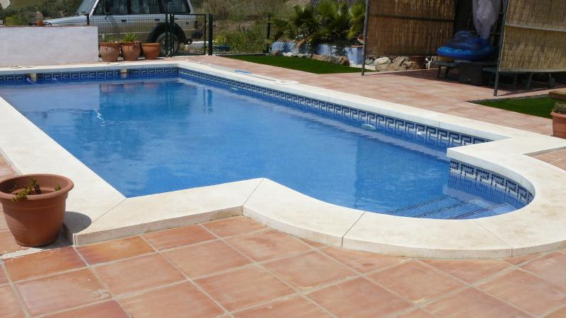 Private 9x4 pool, gated and secure from prying paws!