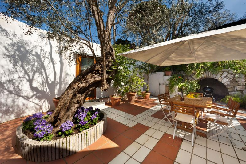 garden terrace with outside dining table