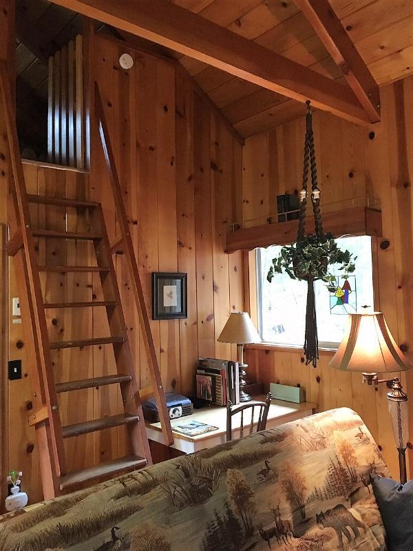 Stairs/ladder to loft