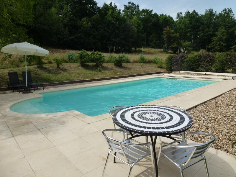 11 m piscina de sal con terraza