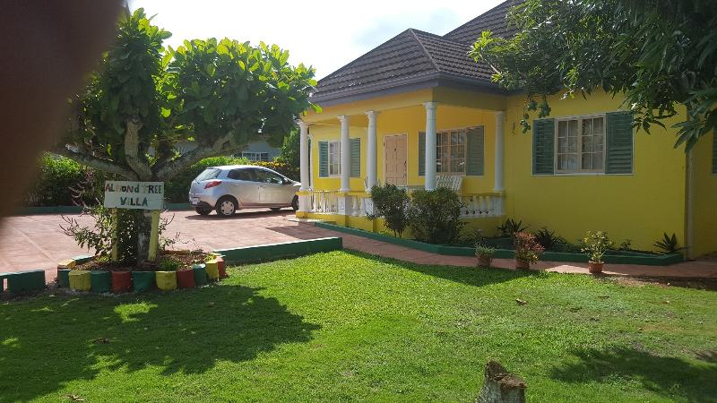 Almond Tree Villa with pool nr Ocho Rios & beaches – semesterbostad i Ocho Rios