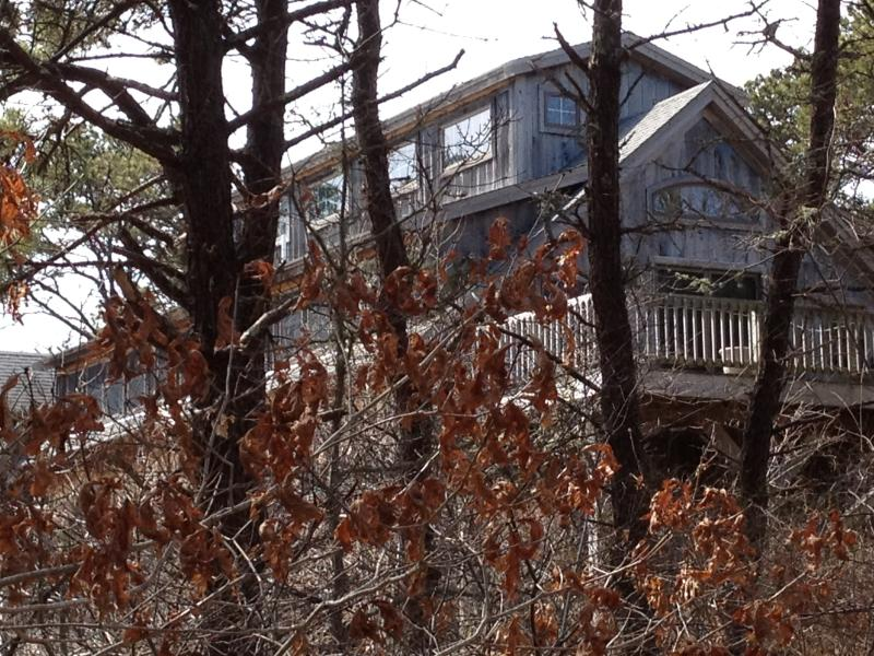 Cape Cod Barn on nearly 3 acres [private]
