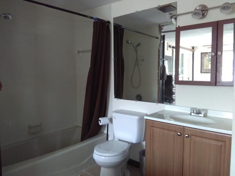 Master bathroon tub & shower.