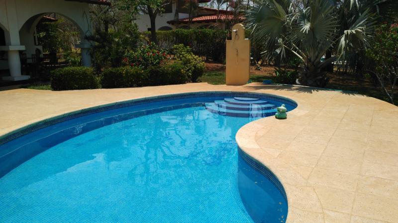 la piscine et sa terrasse pour se detendre
