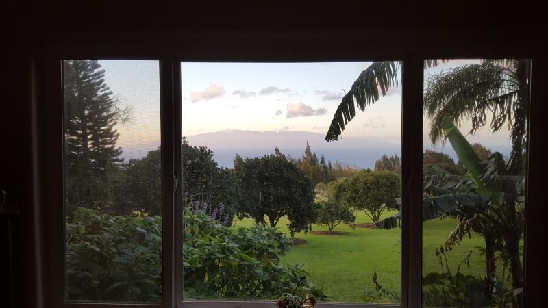 Maui views out the window.
