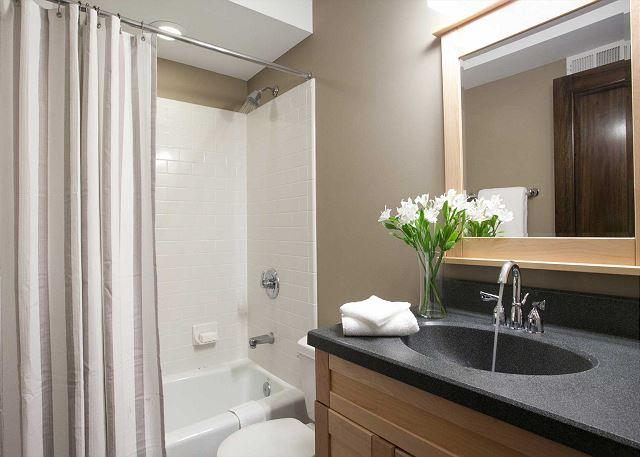 Lower level bathroom with tub/shower combination.