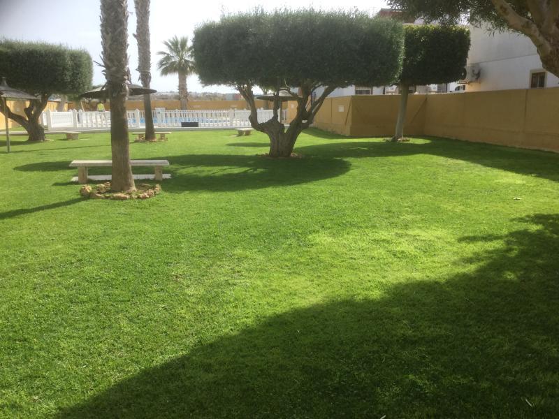 Garden Area around Pool