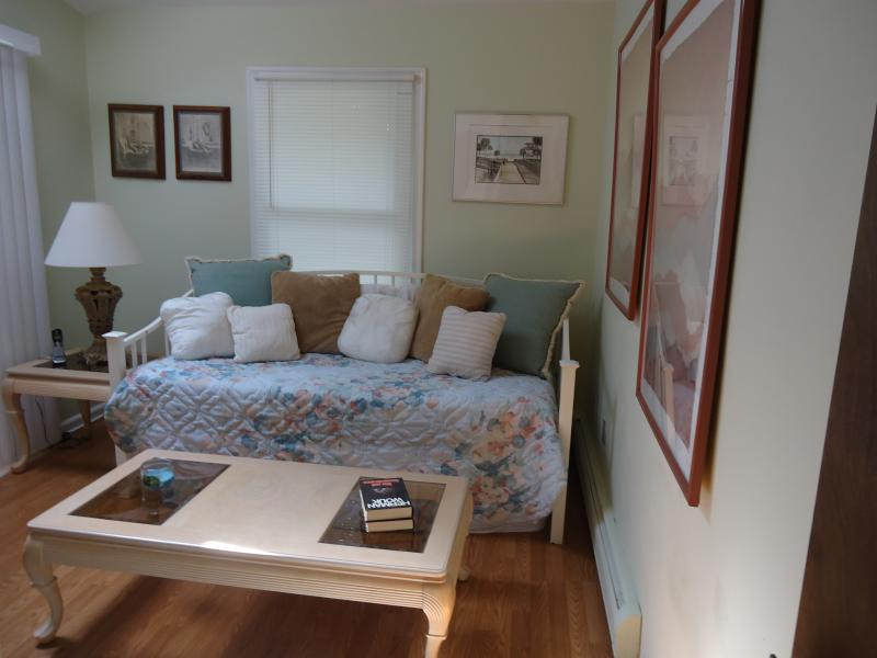 Downstairs bedroom, den, day bed with 2 twin beds, closet with shelves