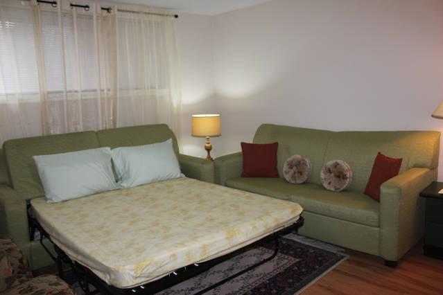 Sofa bed (Double size bed)